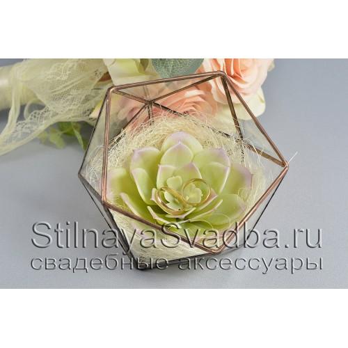 Флорариум для колец с сизалью и суккулентом фото
