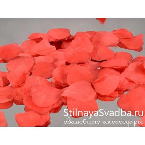 лепестки красных роз фото