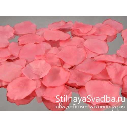 Фото. Лепестки роз, розовый
