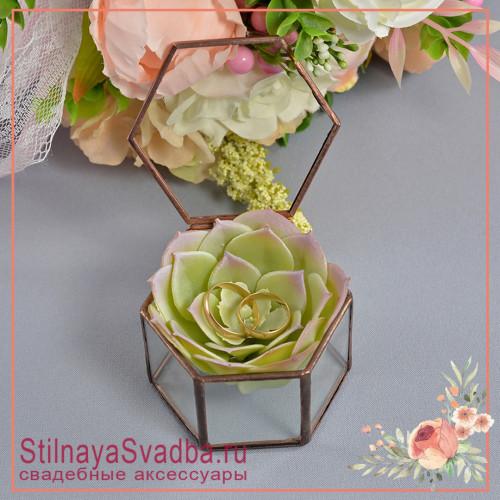 Флорариум в форме миниатюрной шестигранной призмы с каменной розой фото
