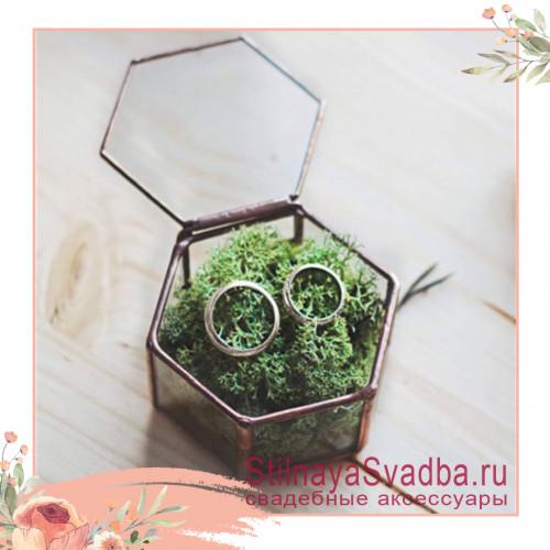 Стеклянная шкатулка с зелёным мхом фото