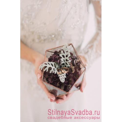 Флорариум с цинерарией и сухоцветами фото