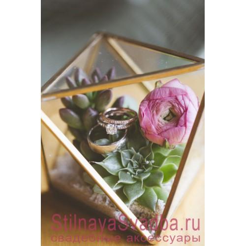 Флорариум  с суккулентами и  ранункулюсом фото