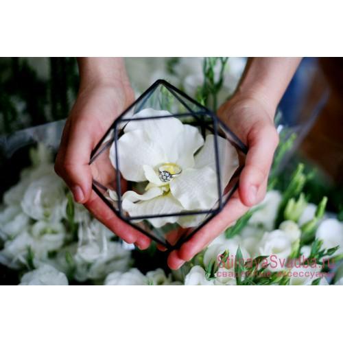 Флорариум для колец с белой орхидеей фото