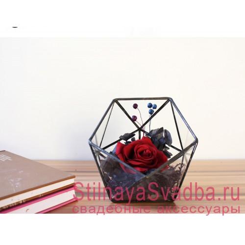 Флорариум для колец   с красной розой и сухоцветами фото