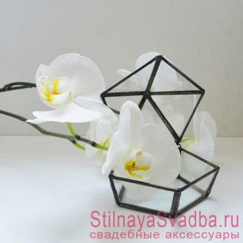 Стеклянная шкатулка с белой орхидеей декоративной фото