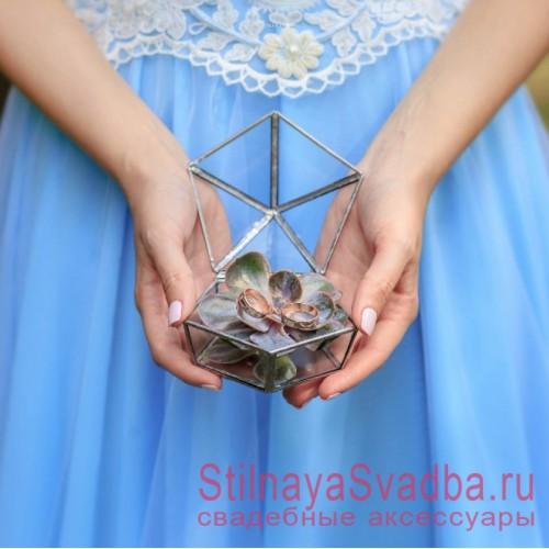 Стеклянная шкатулка с суккулентом фото