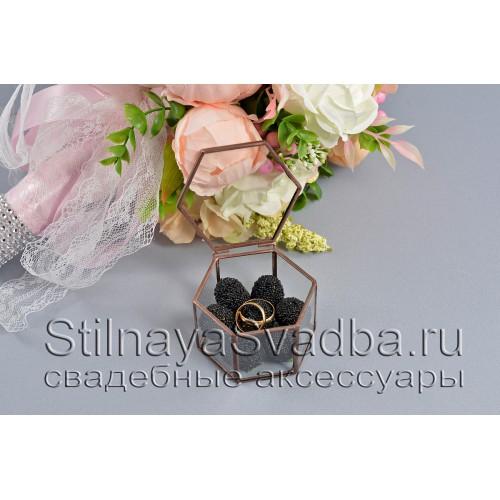 Флорариум в форме миниатюрной шестигранной призмы с ежевикой фото