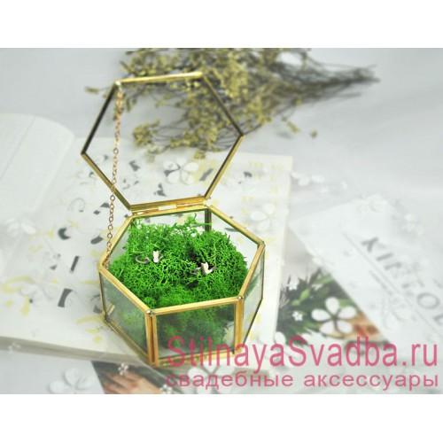 Стеклянная шкатулка для колец с зелёным мхом фото