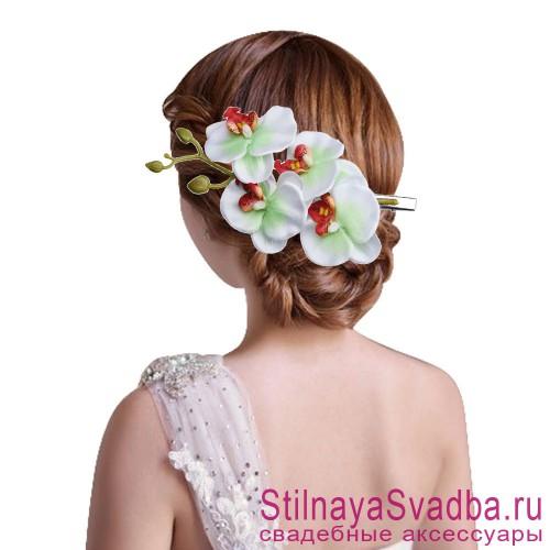 Ветка орхидеи  бело-салатовая фото