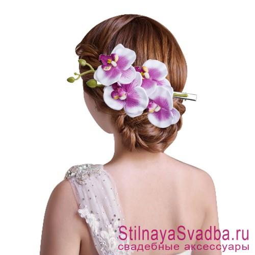 Ветка орхидеи  бело-лиловая фото