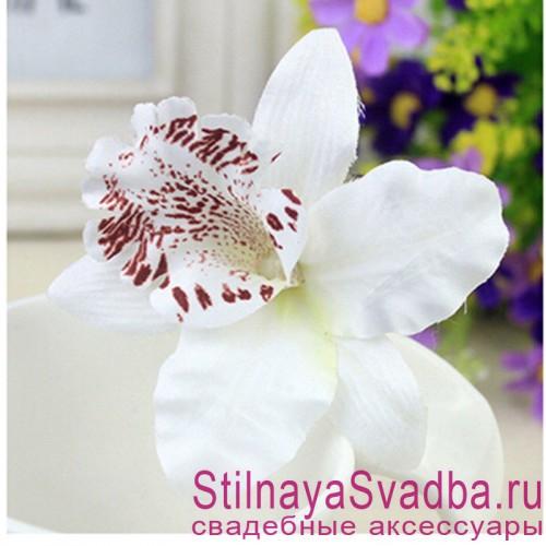 Заколки с орхидеями  белого цвета фото